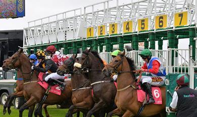 Racetech horse racing